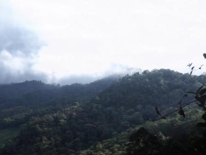 Valle del Cauca, Bosque de San Antonio, Colombia, Hotspot Andes Tropicales